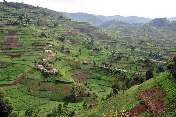 Uganda S Demographic And Health Challenges Put Into
