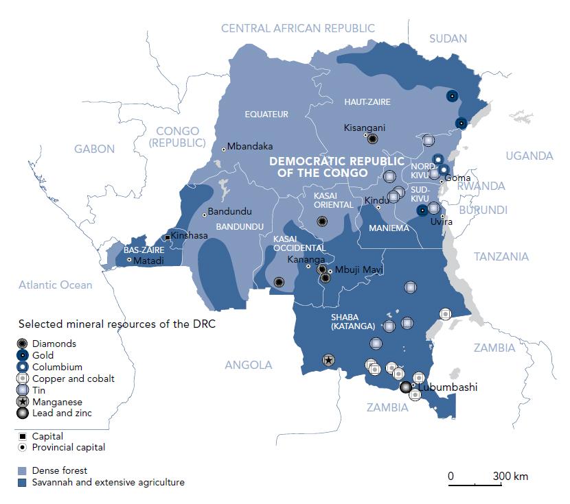GUERRA SUBTERCEIRIZADA POR RECURSOS MINERAIS: UM ESTUDO SOBRE O CASO DO CONGO
