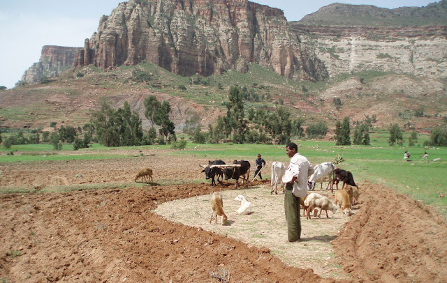 a case study of ethiopias land and economy Ethiopia is considered to be one of the oldest nations in the world but at present its socio-economic condition is not satisfactory it is the second most populous country in sub-saharan africa.
