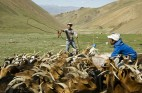 In Mongolia, Climate Change and Mining Boom Threaten National Identity