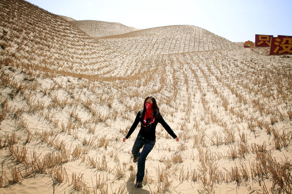 China-sand-fixing