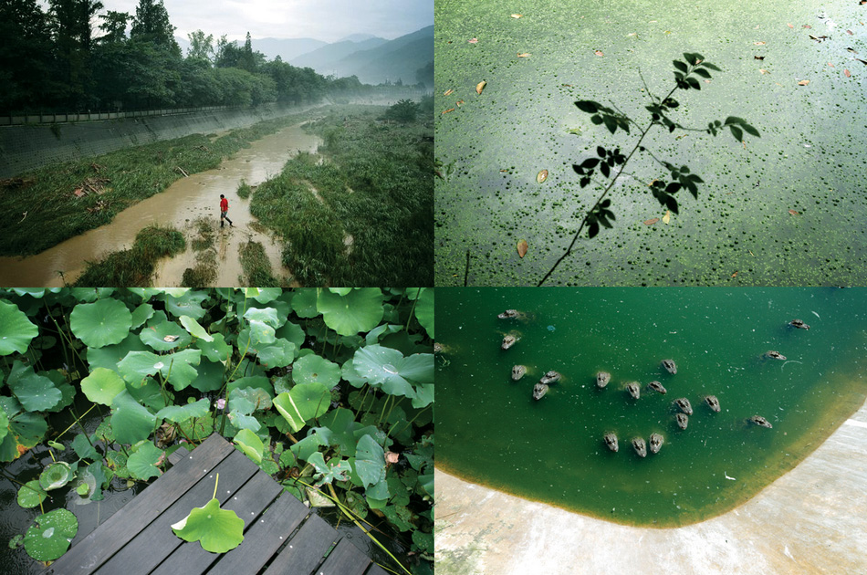 China-wetlands