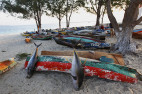 Natural Gas and Albacore: What Tuna Says About the Future of Mozambique