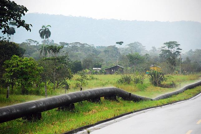 Amazon-oil-pipe
