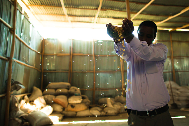 food-innovation-in-Africa