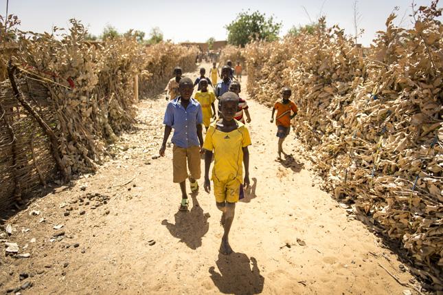 Niger-Sean-Sheridan2