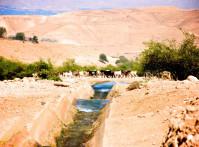 Kidron-Valley