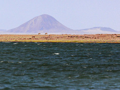 Turkana_small