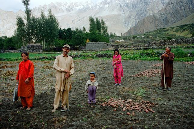 Pakistan-field