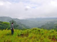 CI_Liberia