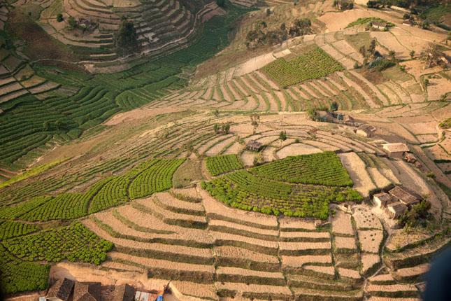 Rwanda terrace