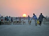 Somalia IDP