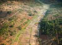 Rwanda-rice-paddies