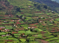 Uganda_landscape3_lo