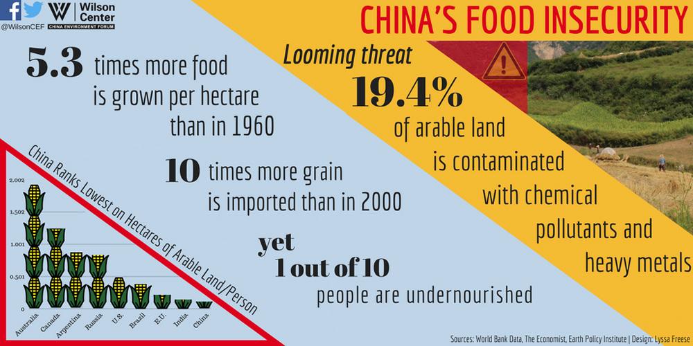 GMO_blog_infographic