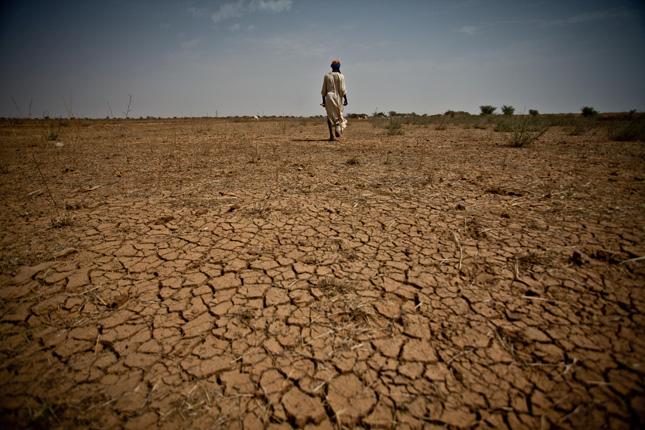 Drought-Field
