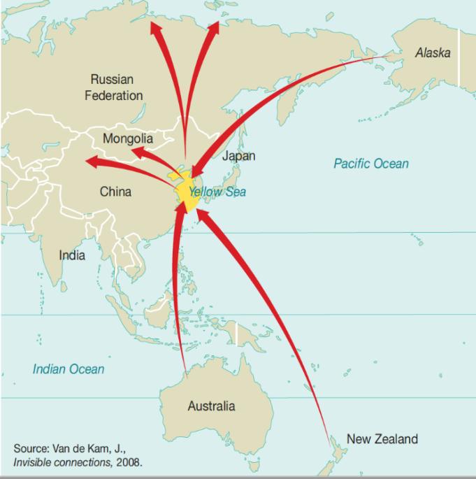 birding map