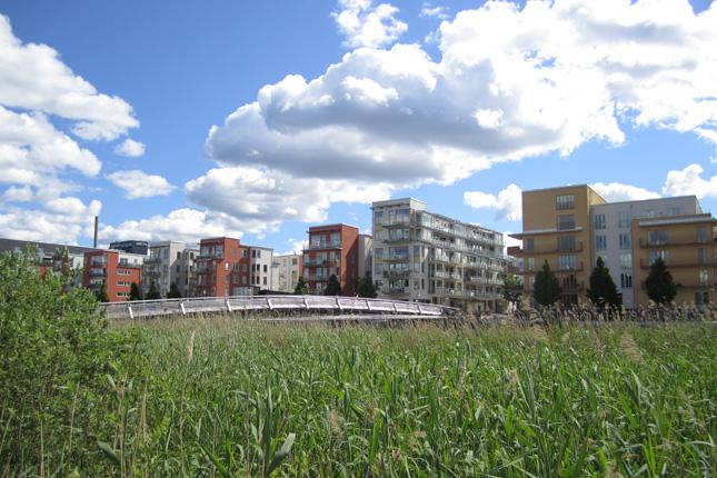 Urban-Wetland