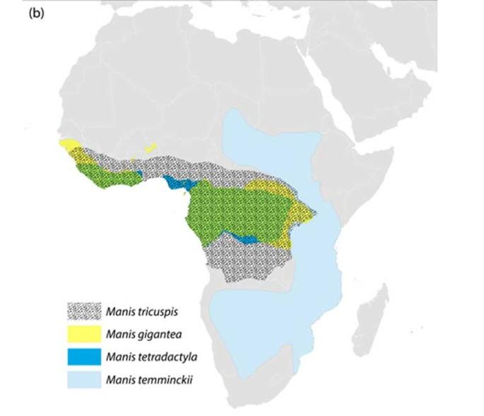 range Africa