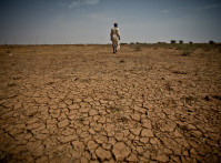 Arid-soils-in-Mauritania
