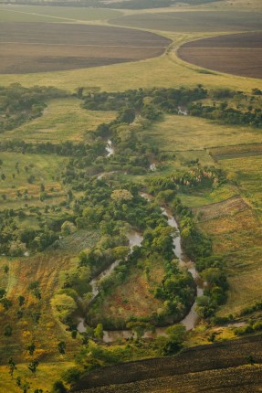 In a show of cooperation, Kenya and Tanzania have agreed to develop a transboundary Water Allocation Plan, which will simplify the process of managing the Mara.