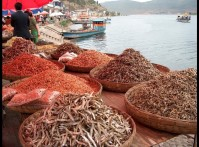 Fishing without Permission: The Uncertainties and Future of Illegal Commercial Fishing