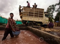 2017-07-India-Food-Water-Security-JGanter-B11A9808-Edit-Edit-2500