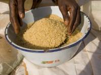 NIgeria Rice