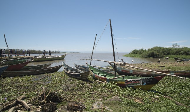 From Joseph Kony to Nile Perch: Complex Links Hook Armed Conflict to Fisheries