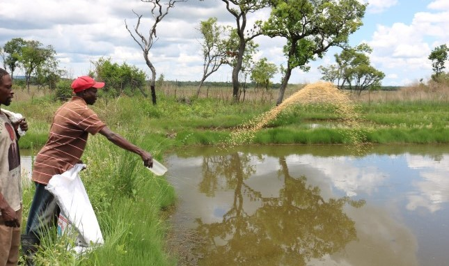 Better Water Security Translates into Better Food Security