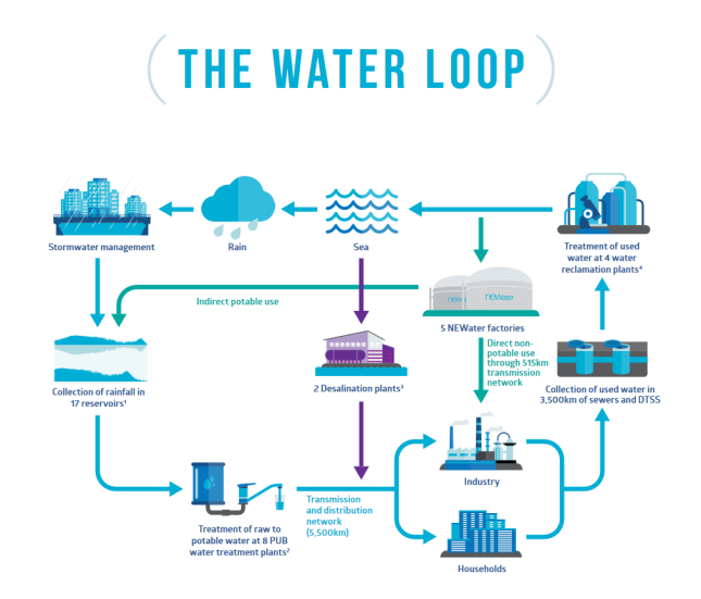 The Water Loop