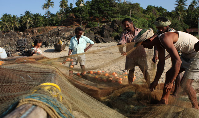 Fisheries Management: A Possible Venue for Navigating Fisheries Conflicts in the Indian Ocean