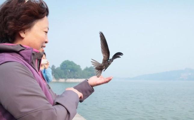 birding beijing