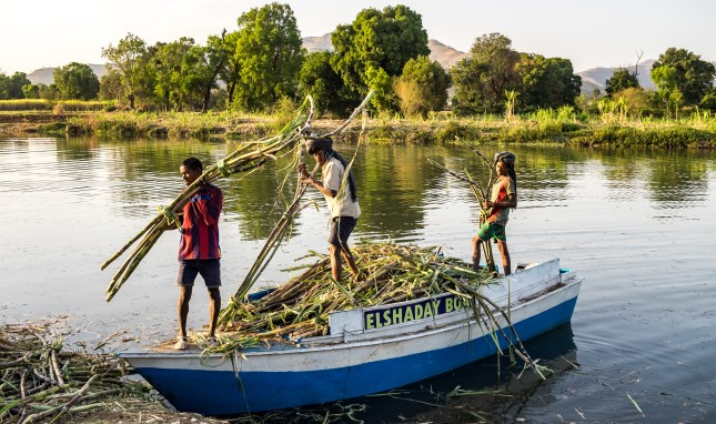 Debt on the Nile? Sharing Rivers on the African Continent