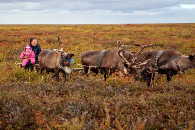 Interdisciplinary Solutions Will Improve Alaska Native Maternal Health (Part 2 of 2)