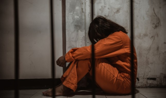 Reproductive Justice in the United States Prison System