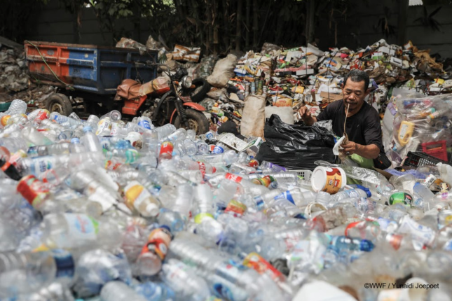 Waste collecting in Malaysia, WWF:Yunaidi Joepoet