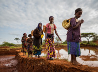 Gayo,Village,,Ethiopia,-,June,19:,Women,And,Young,Village