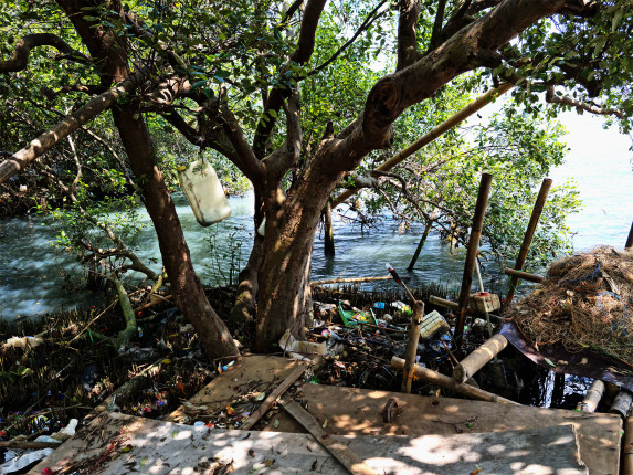 plastic waste pollution in a tree