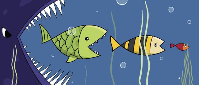 Big Fish to Little Fish