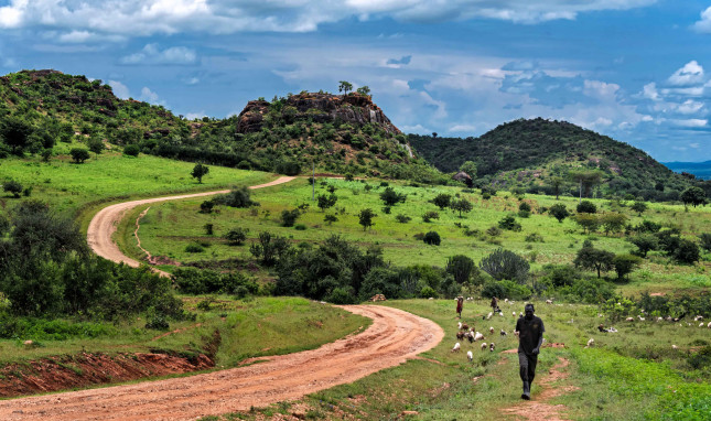 """""""Land is Now the Biggest Gun"""": Climate Change, Conflict, and the Telling Case of Karamoja, Uganda"""