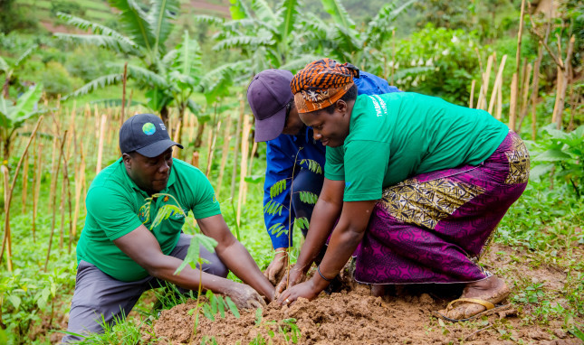 Raising Ambition: The Role of the Green Climate Fund in Building Capacity and Catalyzing Investment